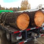 logs-truck
